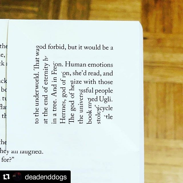 @deadenddogs finding poetry in The Ugly that I didn't know was there.  #Repost @deadenddogs ・・ To the underworld_ At the end of eternity In a tree_ . . . . . . . . . . . . . . . . . #theugly #alexanderboldizar  #harvard  #verkhoyansk  #slovakia #boulder #book #books #bookstagram #bookstagrammer #bookstagrammaton #bookmark #bookmarks #bookpoetry #dogear #dogearpoetry #demiraculation #nothing  GOD forbid. GOD forbid. GOD forbid. GOD forbid. GOD forbid.
