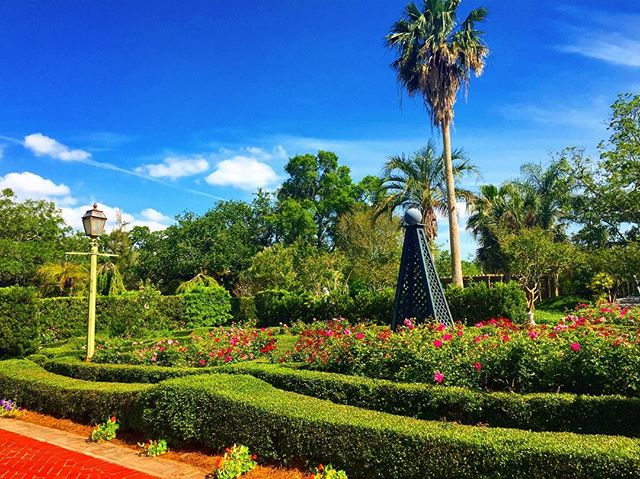 🌴🌴🌴#travel #garden #landscaping #landscape #nature #green #plants #explore #instagood #instamood #bigeasy #nola #horticulture #botanical #landscapephotography #theoutbound #workhard #playhard #view #instadaily #trip #weekend #southern #artdeco #tour #friday #friyay #tgif #inspiration #palmtrees