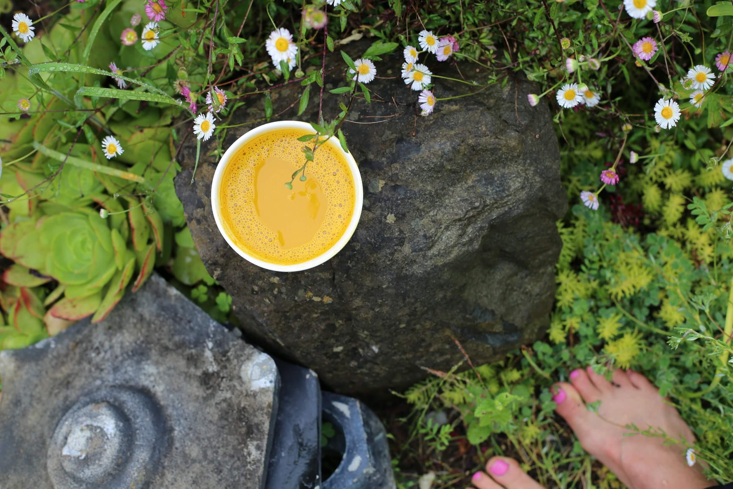 golden milk paste in the garden.jpeg