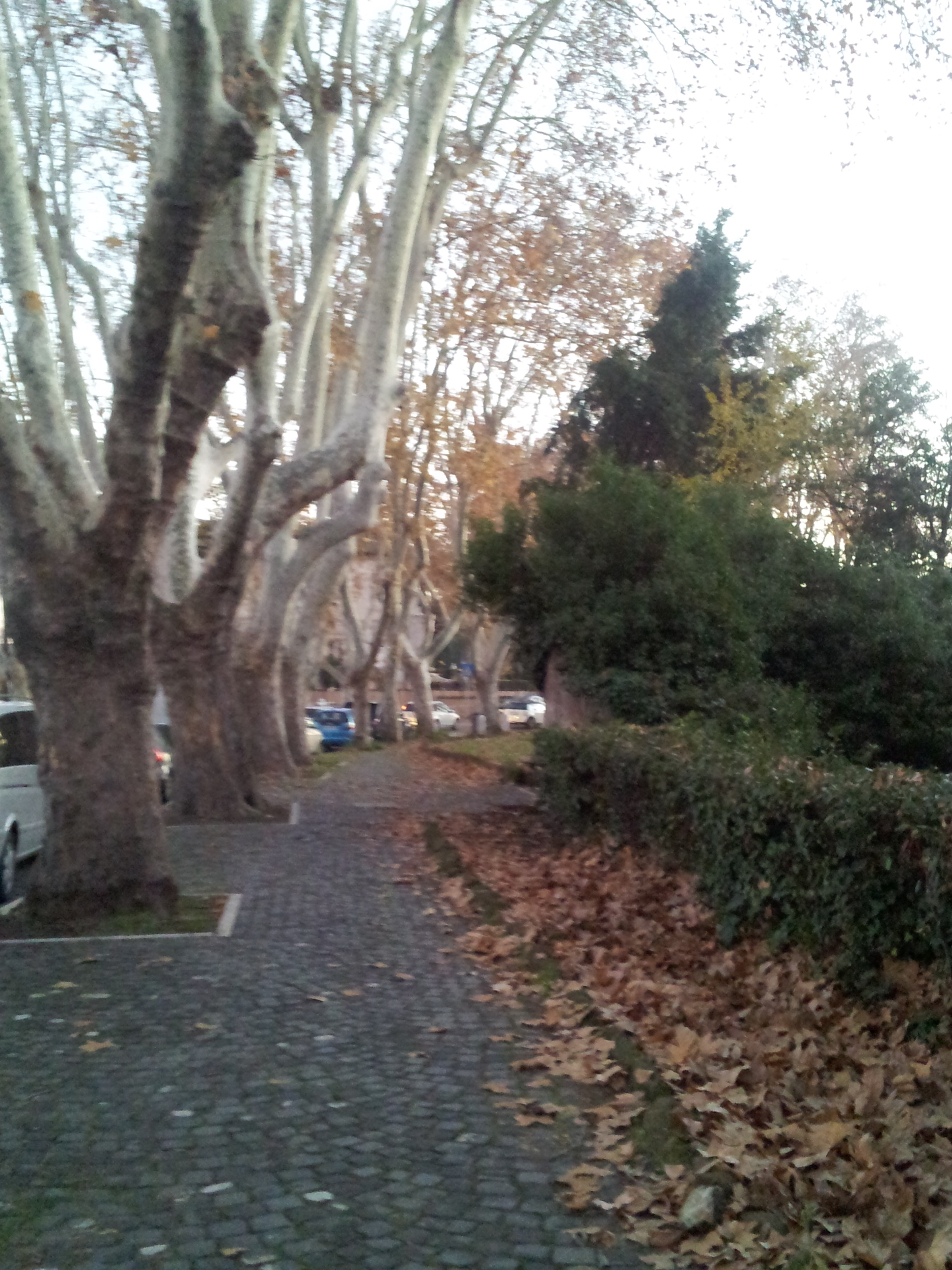 A neighborhood in Rome