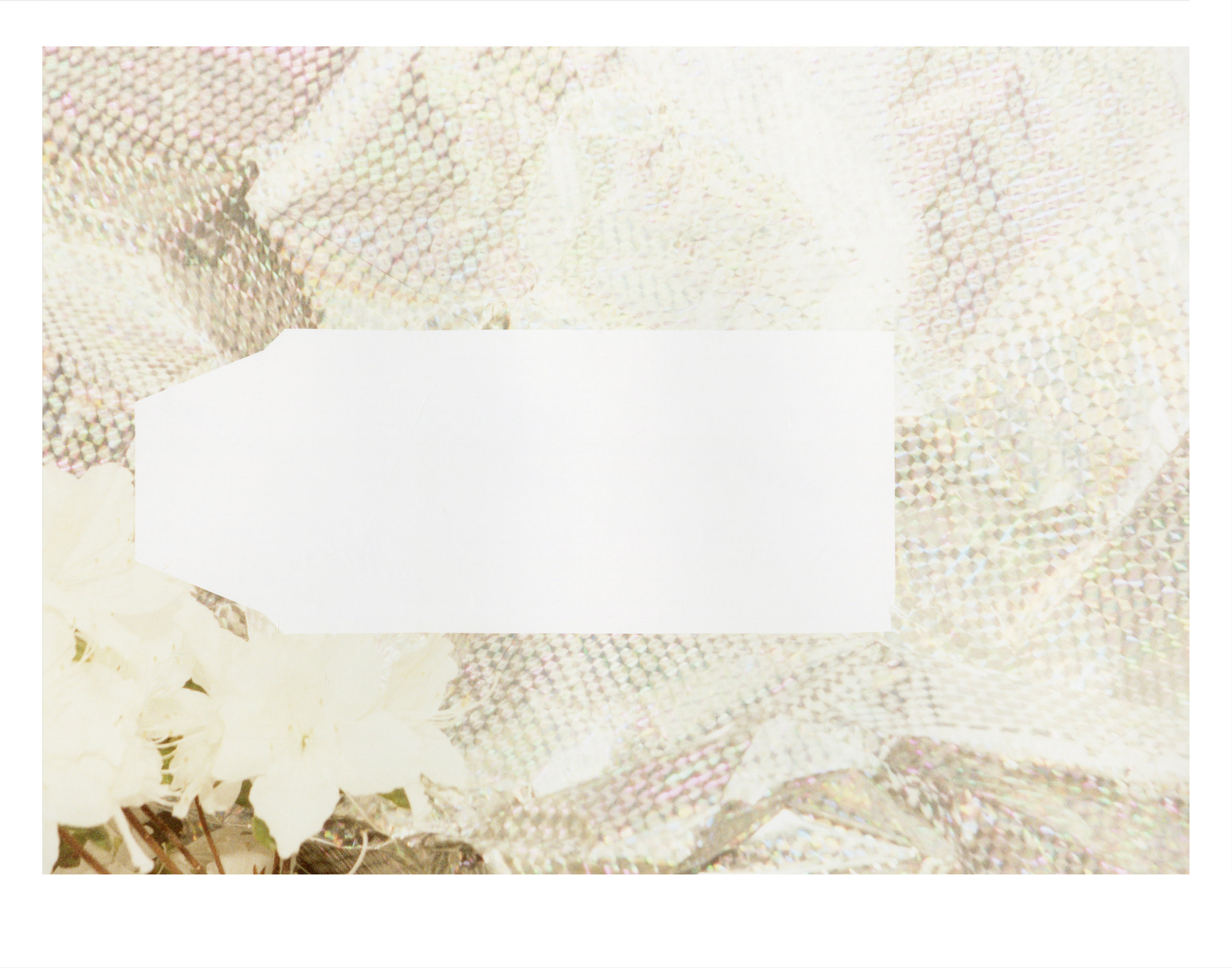01 Prism Bag FP-100c.jpg