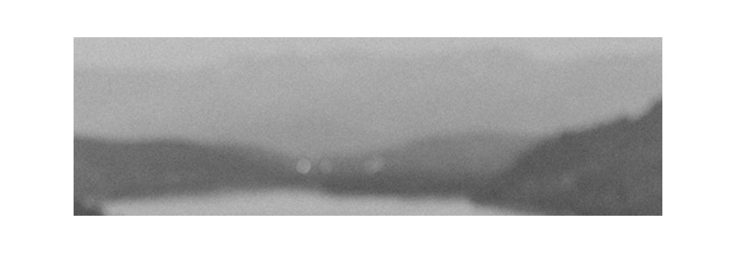 JocelynNoel_Logo.png