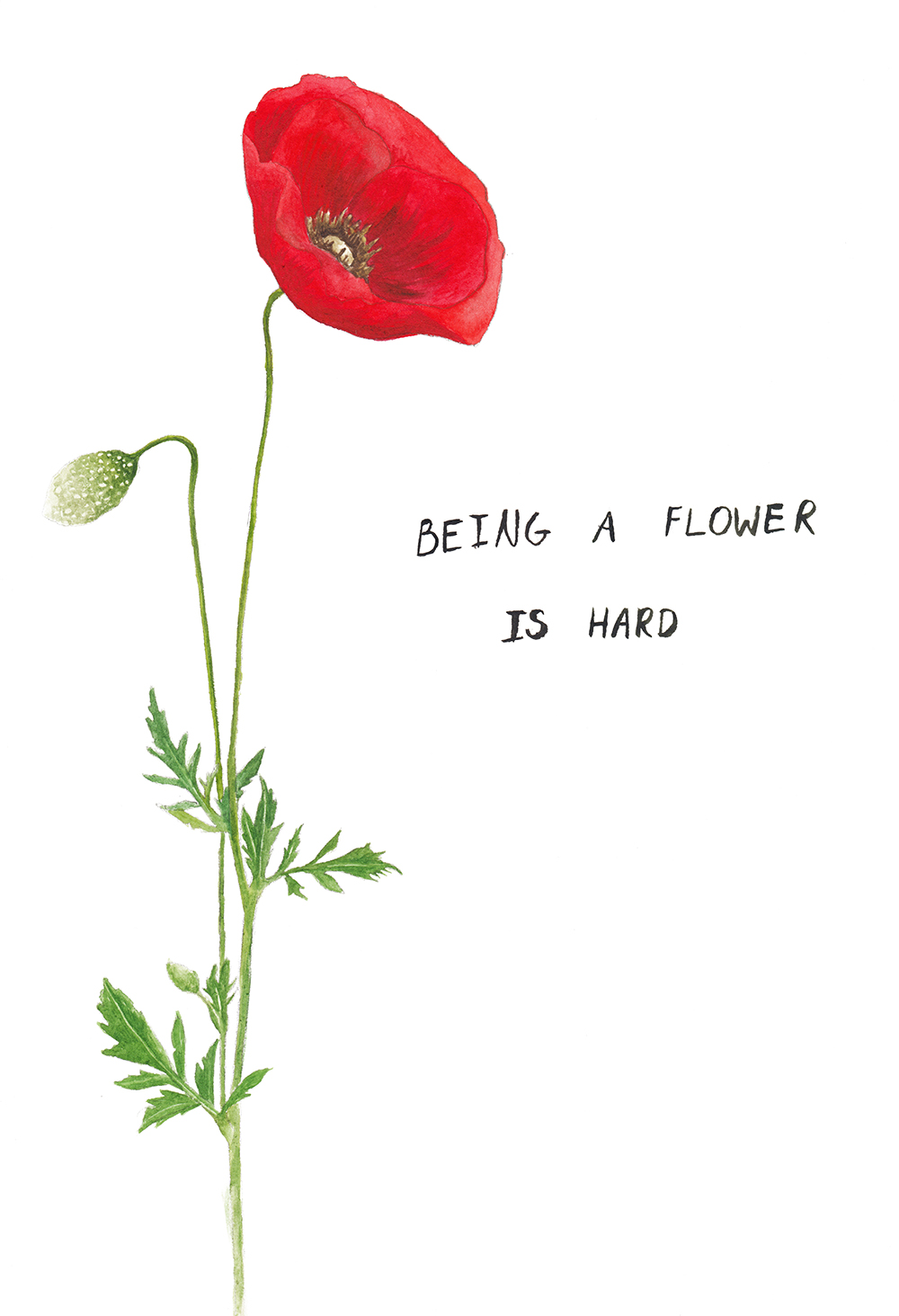 being a flower is hard 1 small.jpg