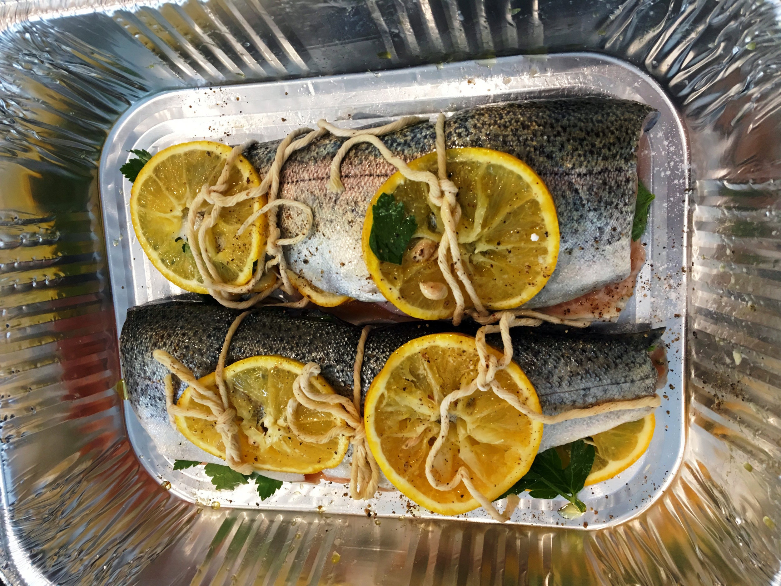 The trout, as uncooked and tied.
