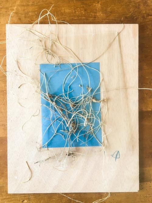 Cyanotype in progress || Rachel Loewens Fine Art