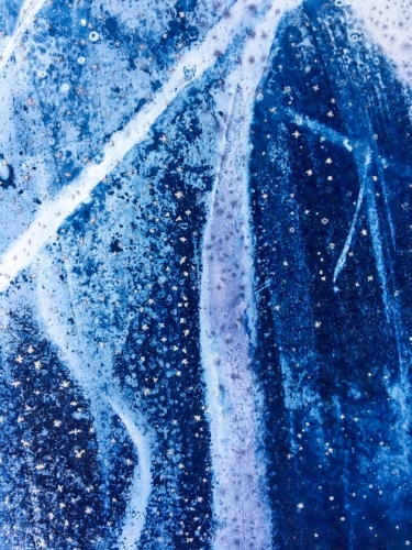 Cyanotype closeup || Rachel Loewens Fine Art || Omaha, NE