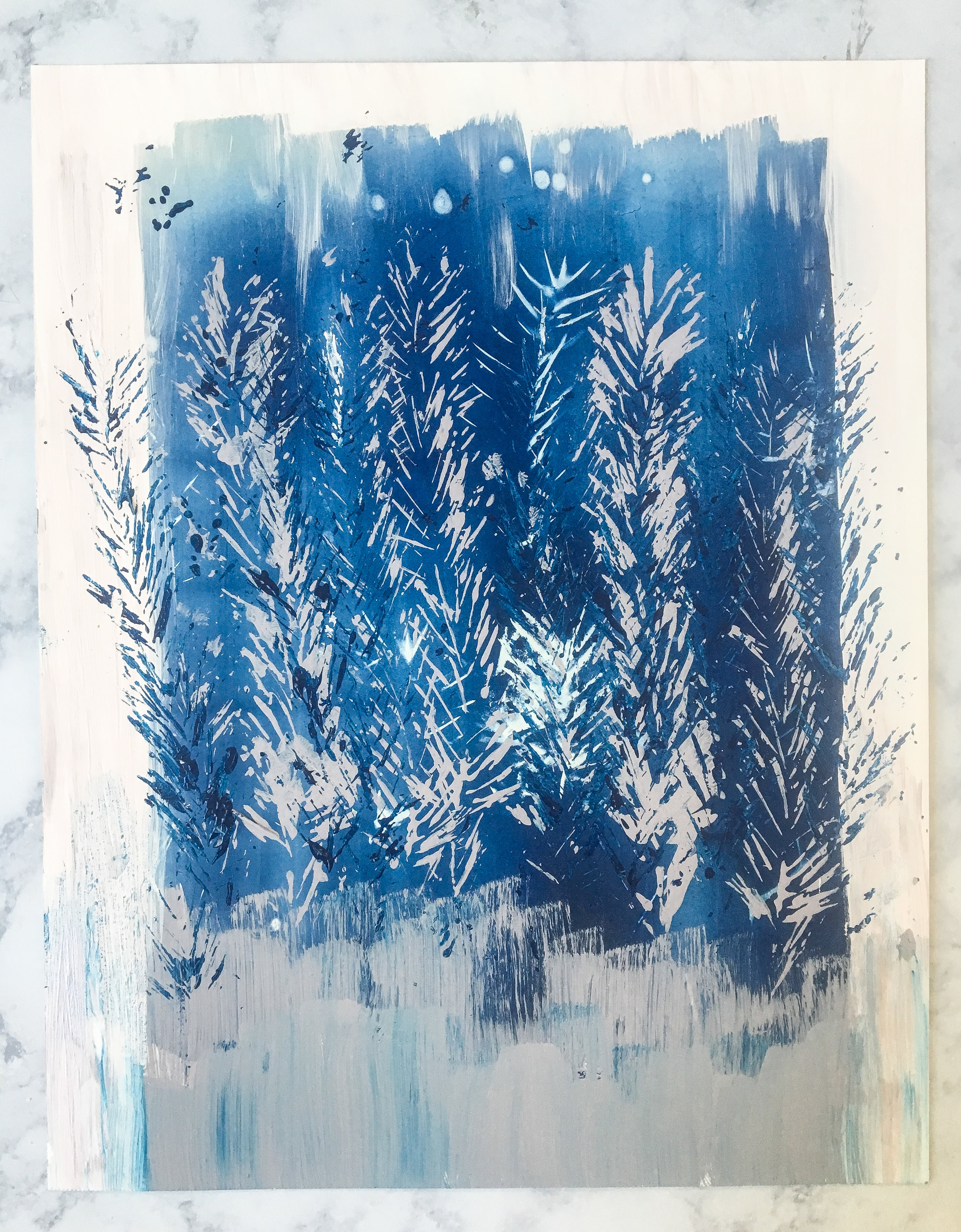 Sunny December Cyanotypes || Rachel Loewens Fine Art