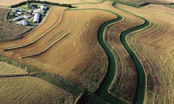 By contour farming this field, the farmer is plowing/planting across a slope following its elevation contour lines.