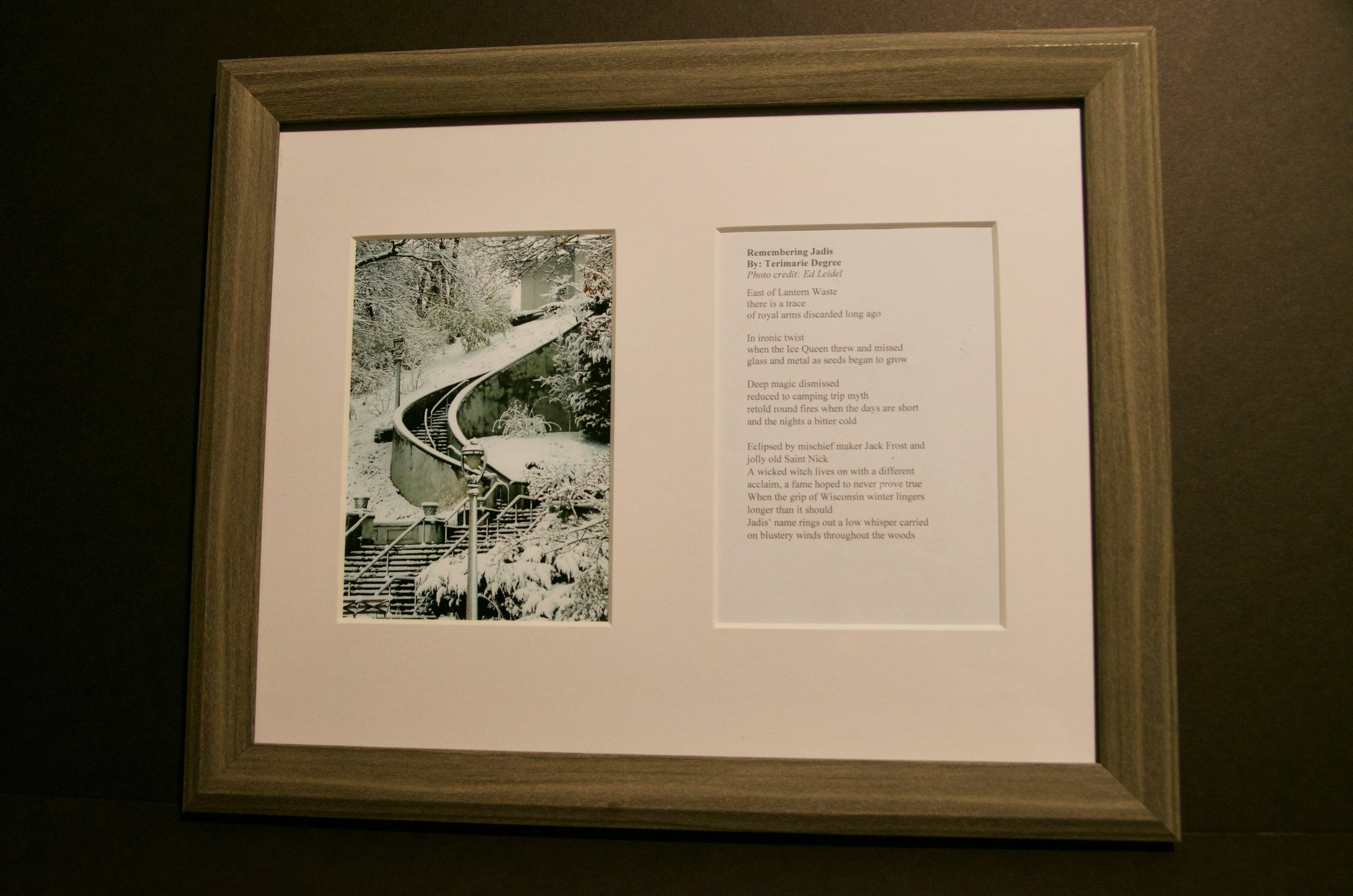 "TERIMARIE DEGREE   13""x16"" photo and original poem (framed)   Value:  $200 |  Minimum bid:  $75"