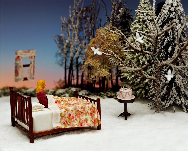 Winter Wish, Winter Dream