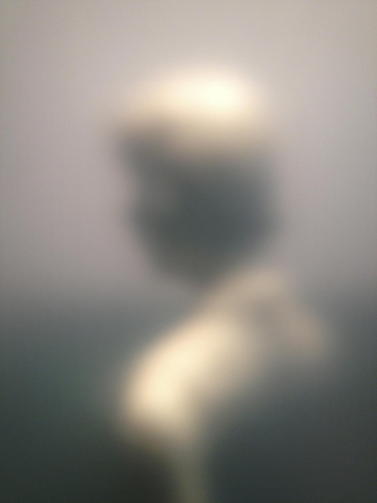 Anonymous Witness