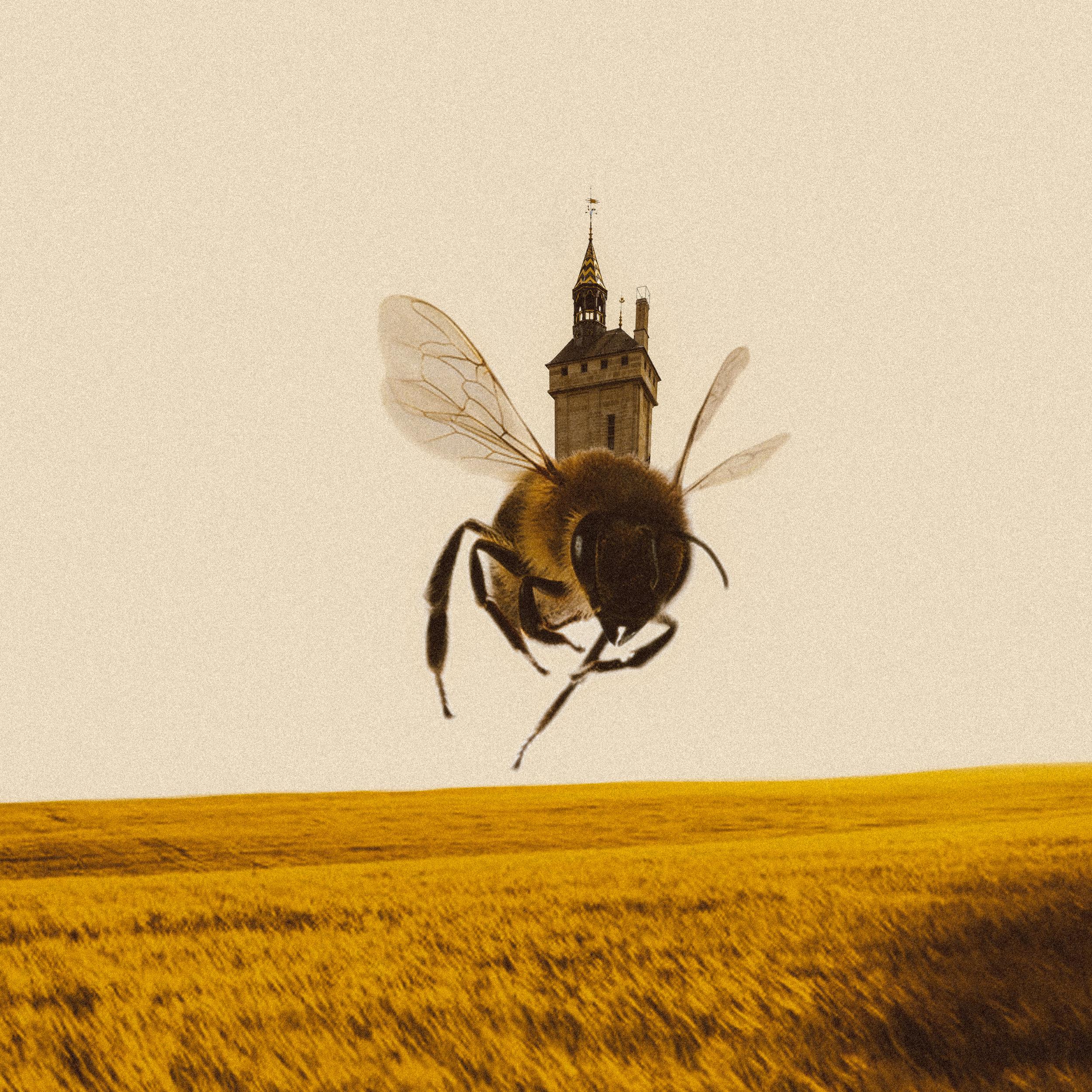 Pollination House