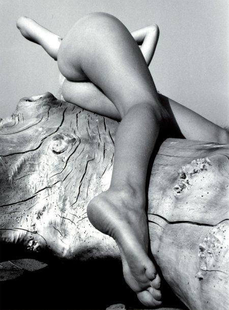 1934, Lucien Clergue, Nu au bois flotté.jpg
