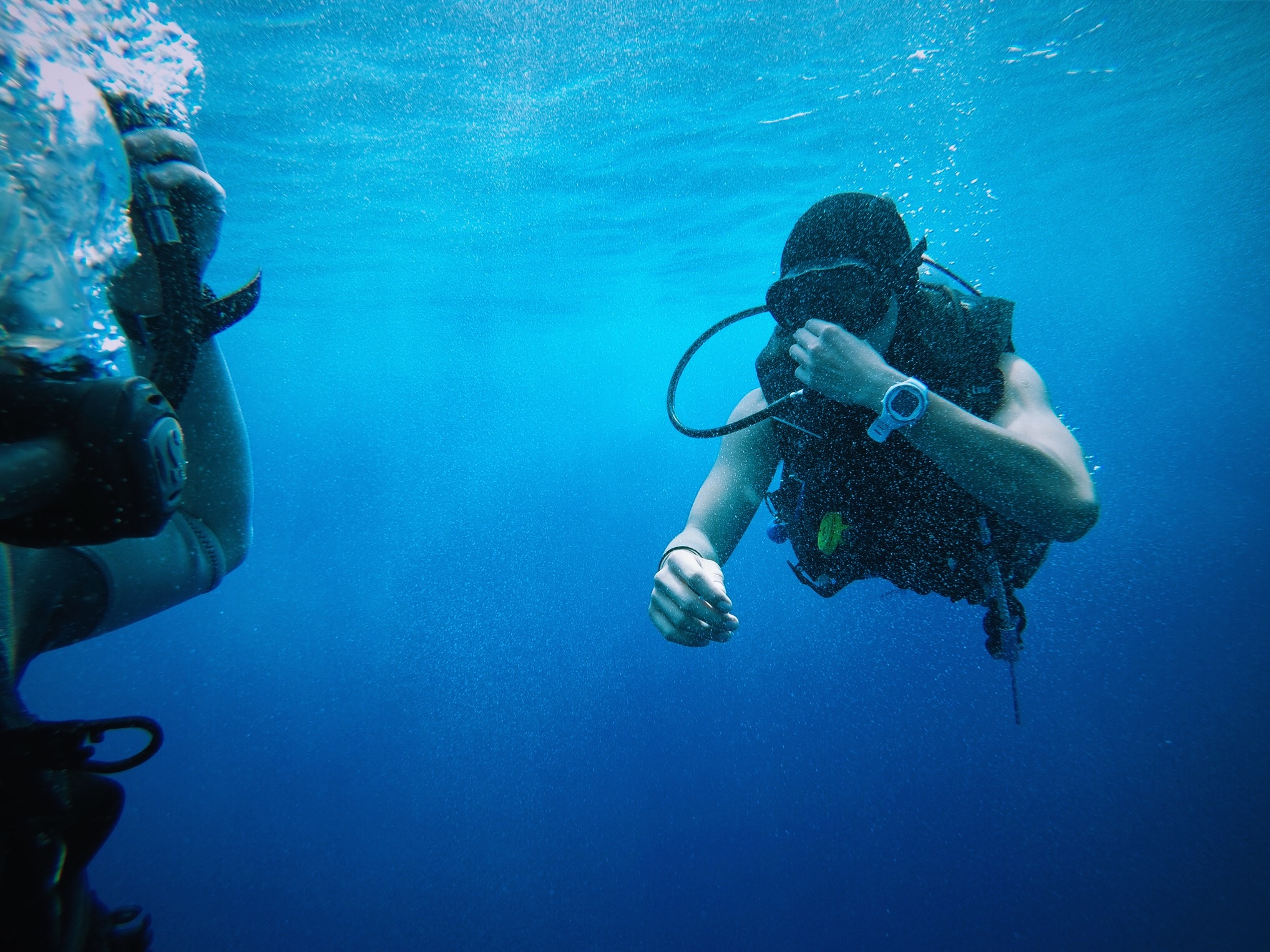 Private Snorkeling - Island Tour -Snorkel and Nature preserve boat tour of the Isles of Mujeres & Contoy