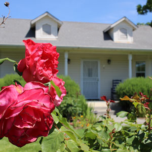 Stay at Landmark Vineyards in a winery cottage