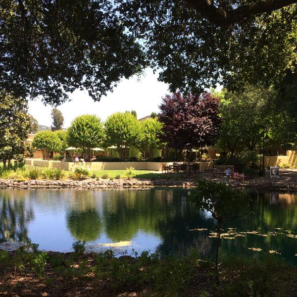 Landmark Vineyards Sonoma