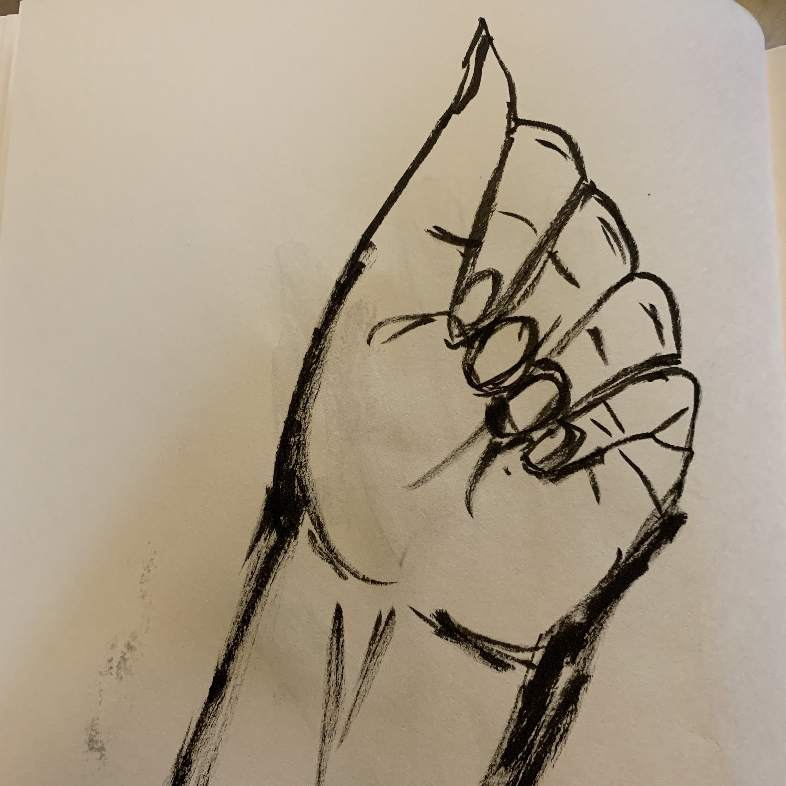 Evidently this is the only shape my left hand can make.