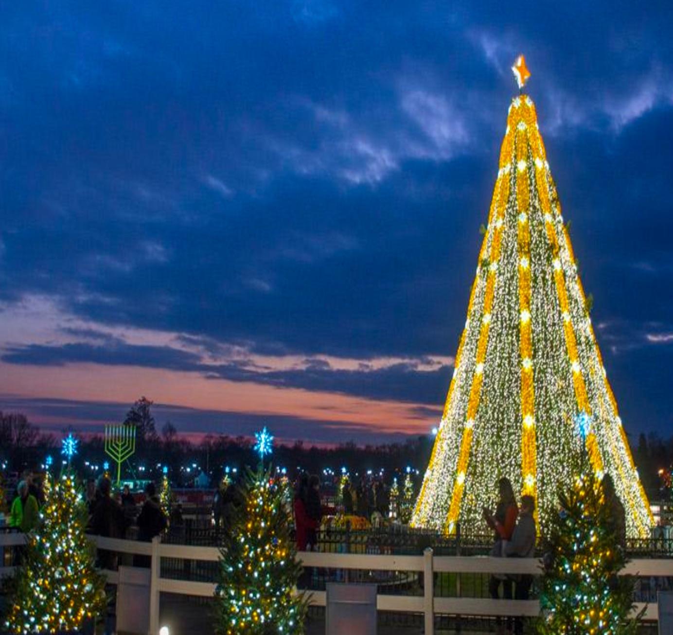 National Christmas Tree Washington DC