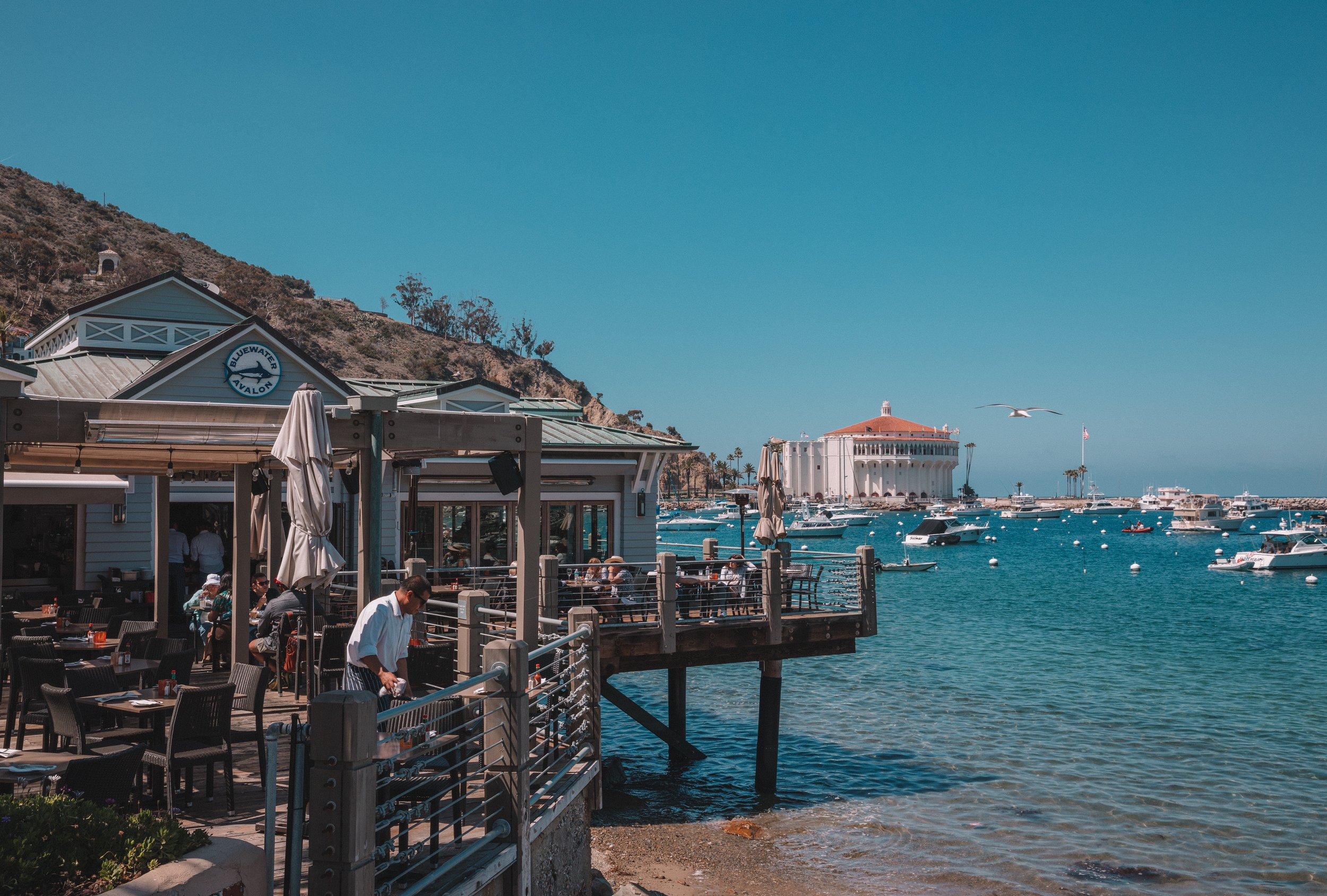 Bluewater Avalon, located on Santa Catalina Island.