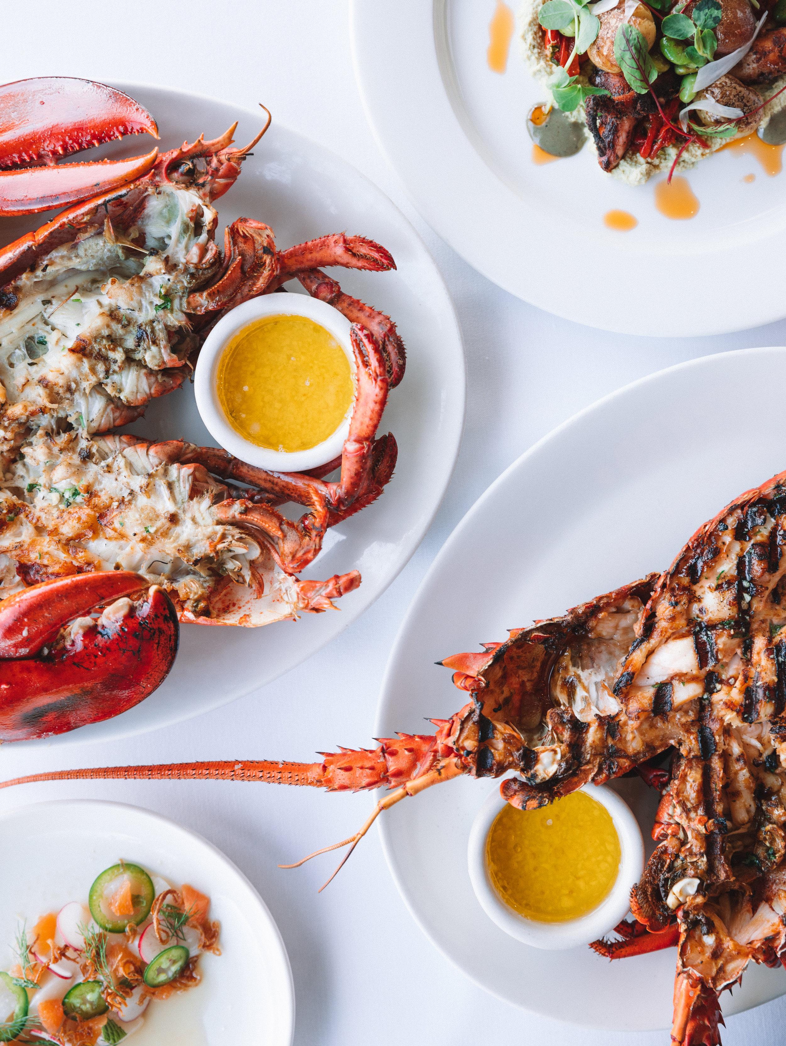 The Lobster-58.jpg