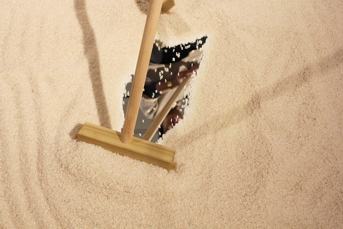 Rice Bed_4.jpg