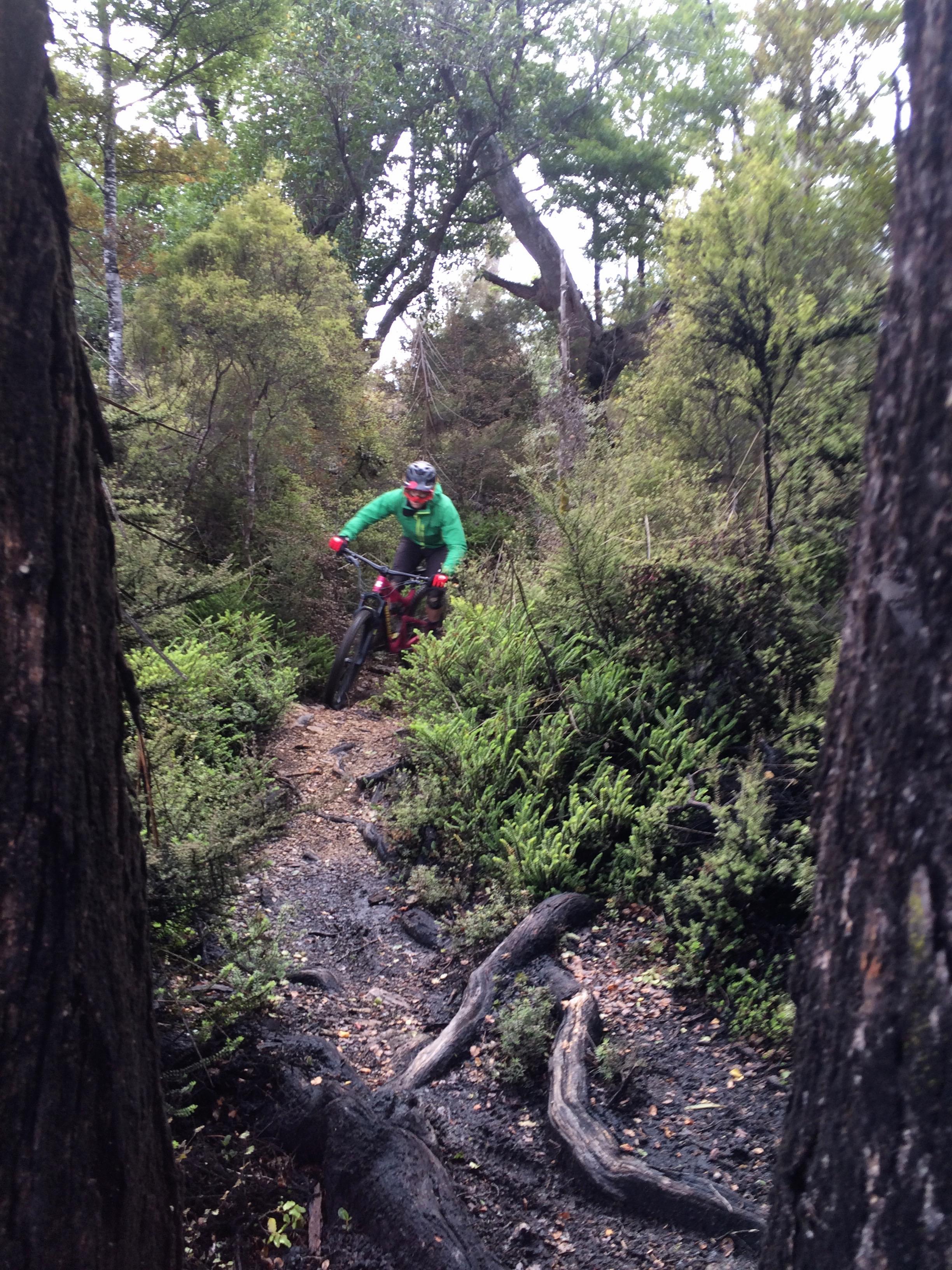 Too fast for my iPhone camera. Nick Crocker, Peaking Ridge.