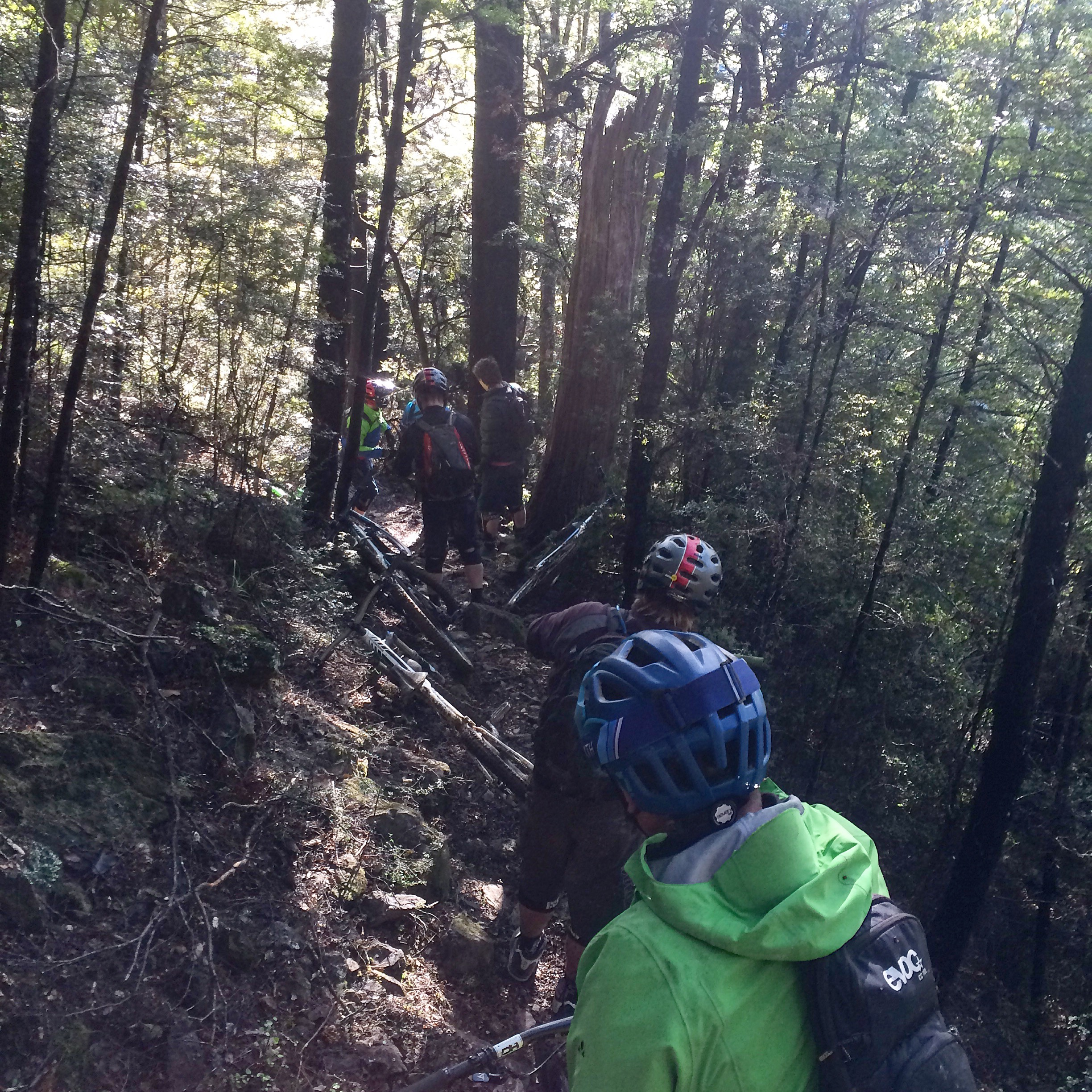 Man down. A snapped-off chin guard got us all thinking   full-face helmets.Wairoa Gorge.