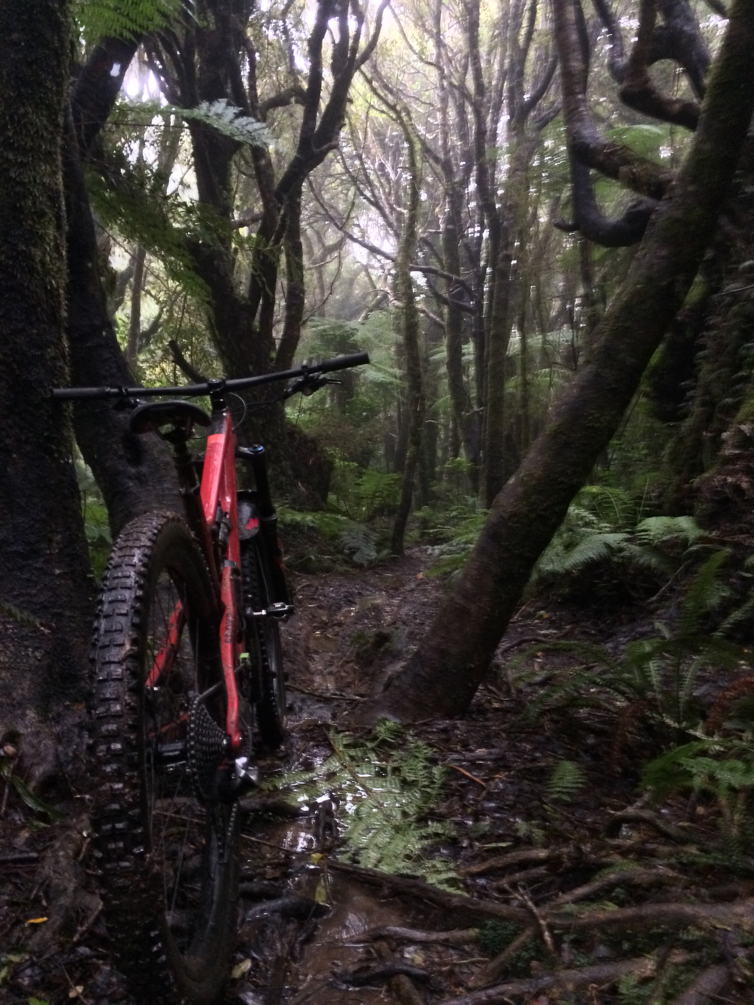 This is where I may have soiled myself (the first time). It almost makes wet riding something to yearn for.