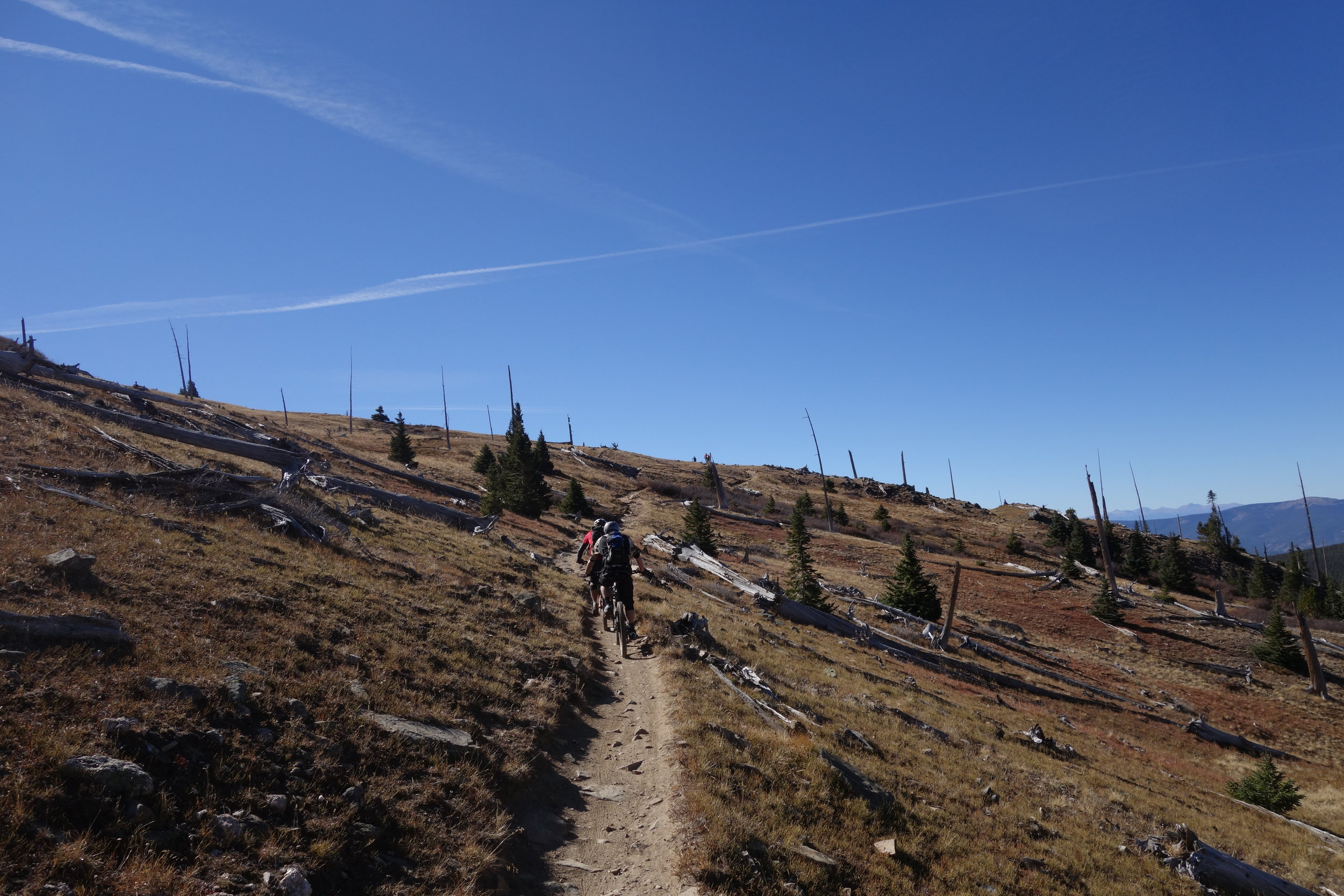 Endless singletrack and gentle climbs. I want to move to Monarch Crest