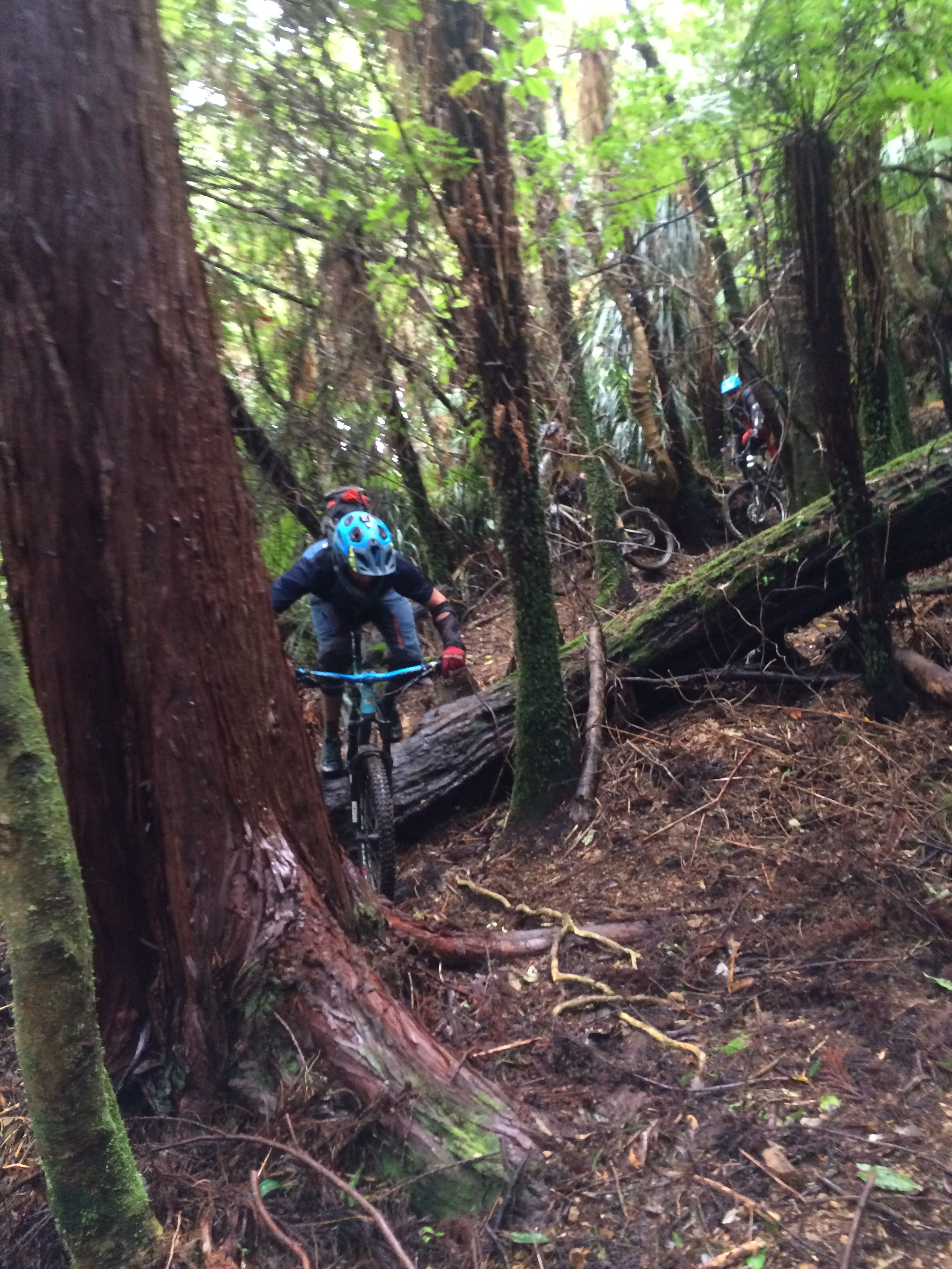 Hunter Robb showing some form. Garden of Eden transition trail