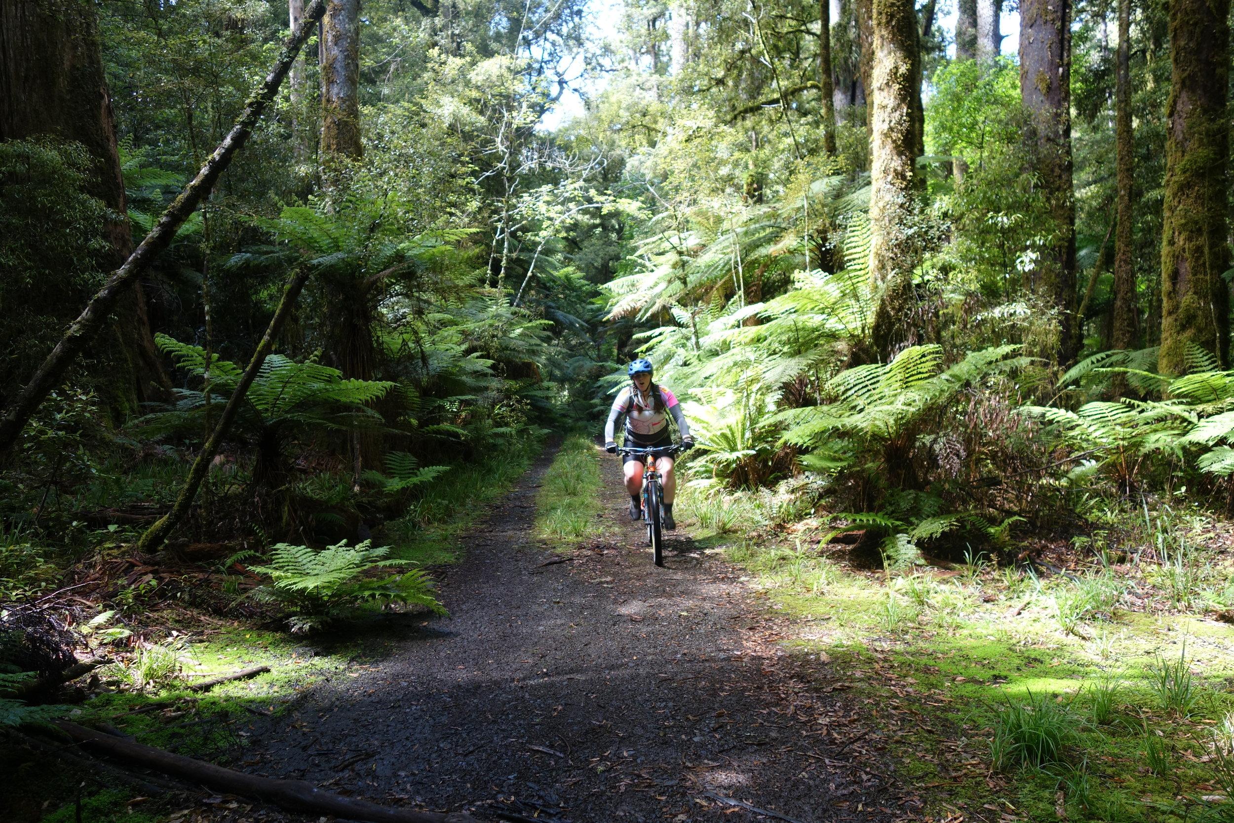 Kristina cruising the dis-used logging road