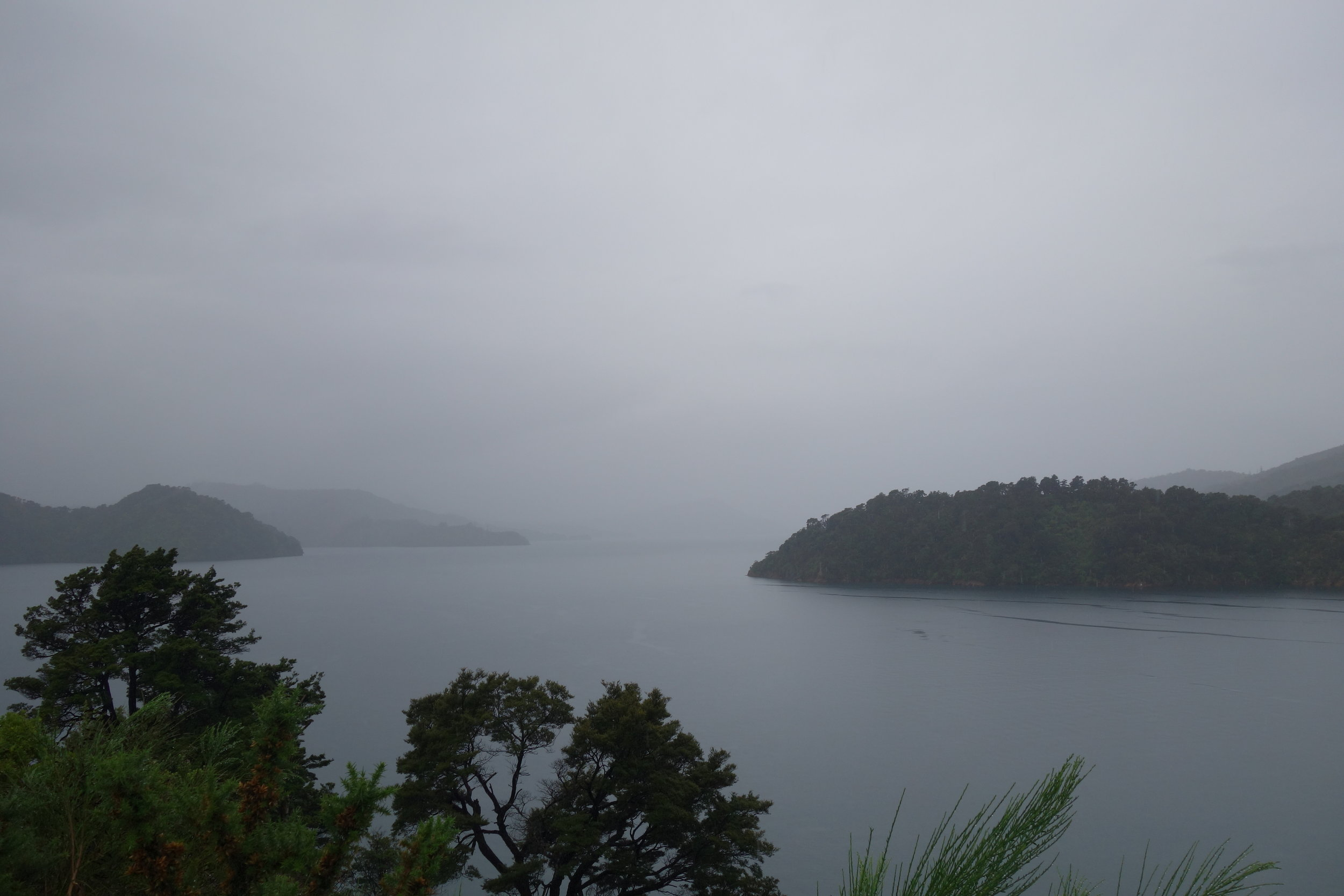 I've got all day so I take the scenic route along Queen charlotte Drive. Yes, it is indeed rain.