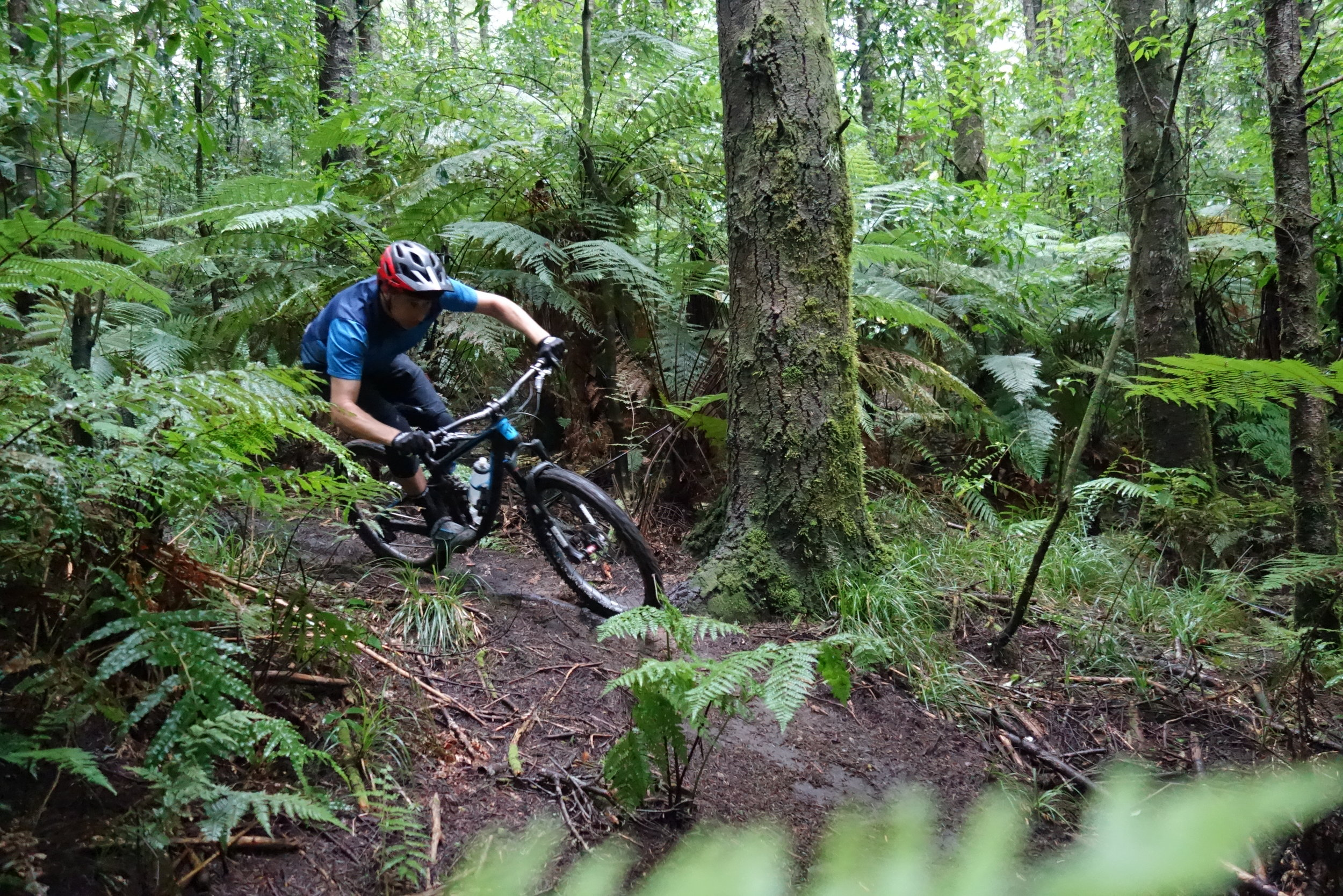 The next day after torrential rain and the trails are nearly dry already. Hero dirt for miles with a few slippy bits for added fun. Jeff Carter is surprisingly fresh after his 4th place in Masters at the EWS.