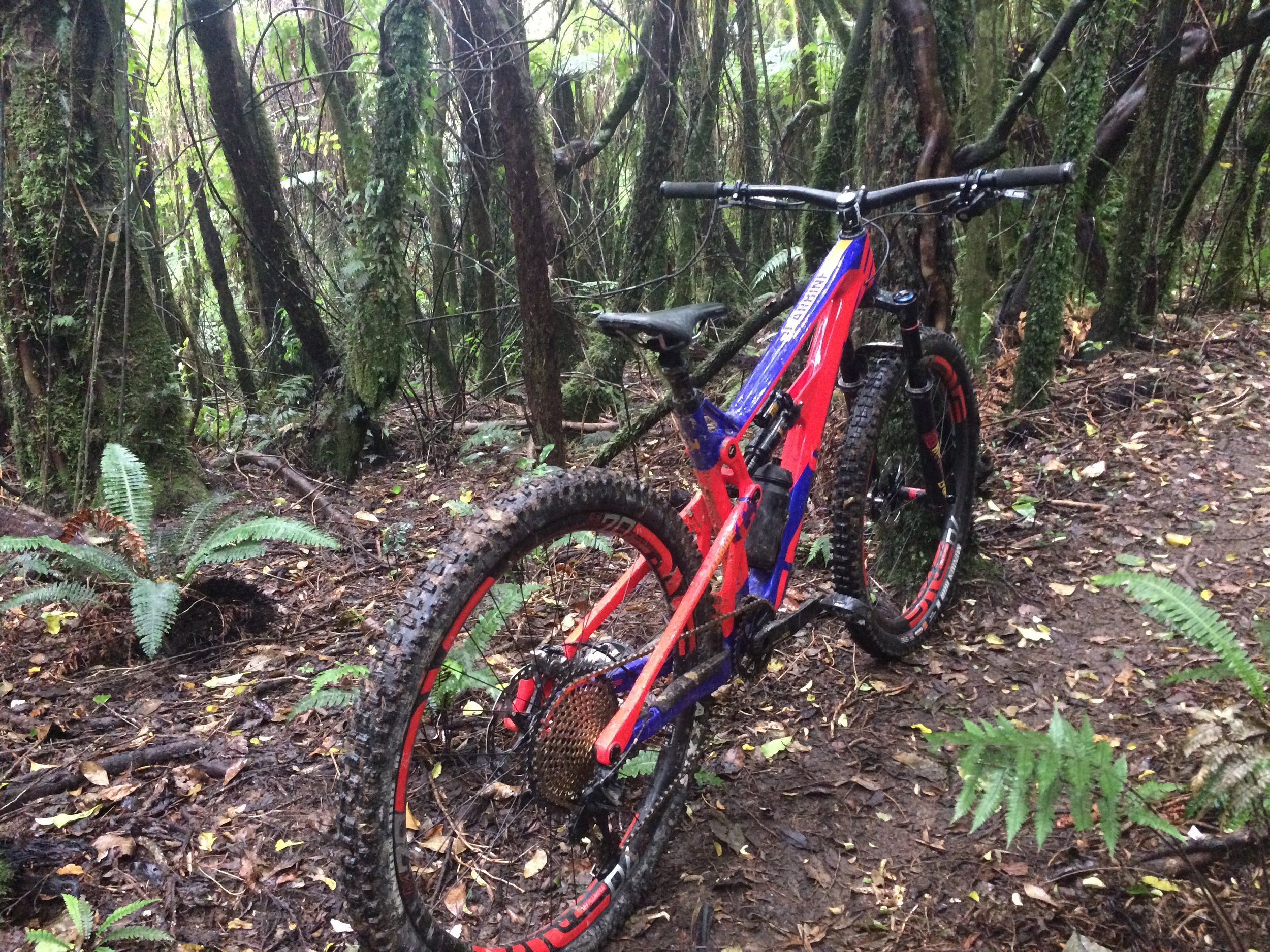 Shitty iPhone pic as it was raining. Surprisingly, the beast   handled the Akatarawas tight technical slippery single track with ease
