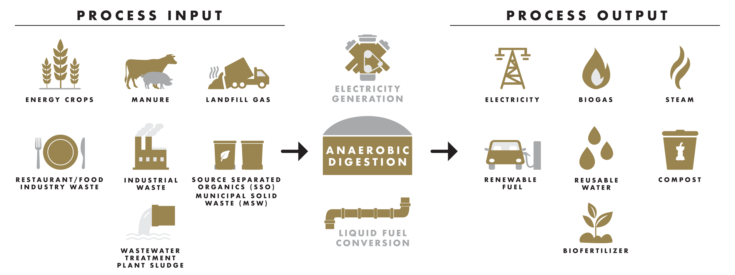 AnaerobicDigestion-01-01.png