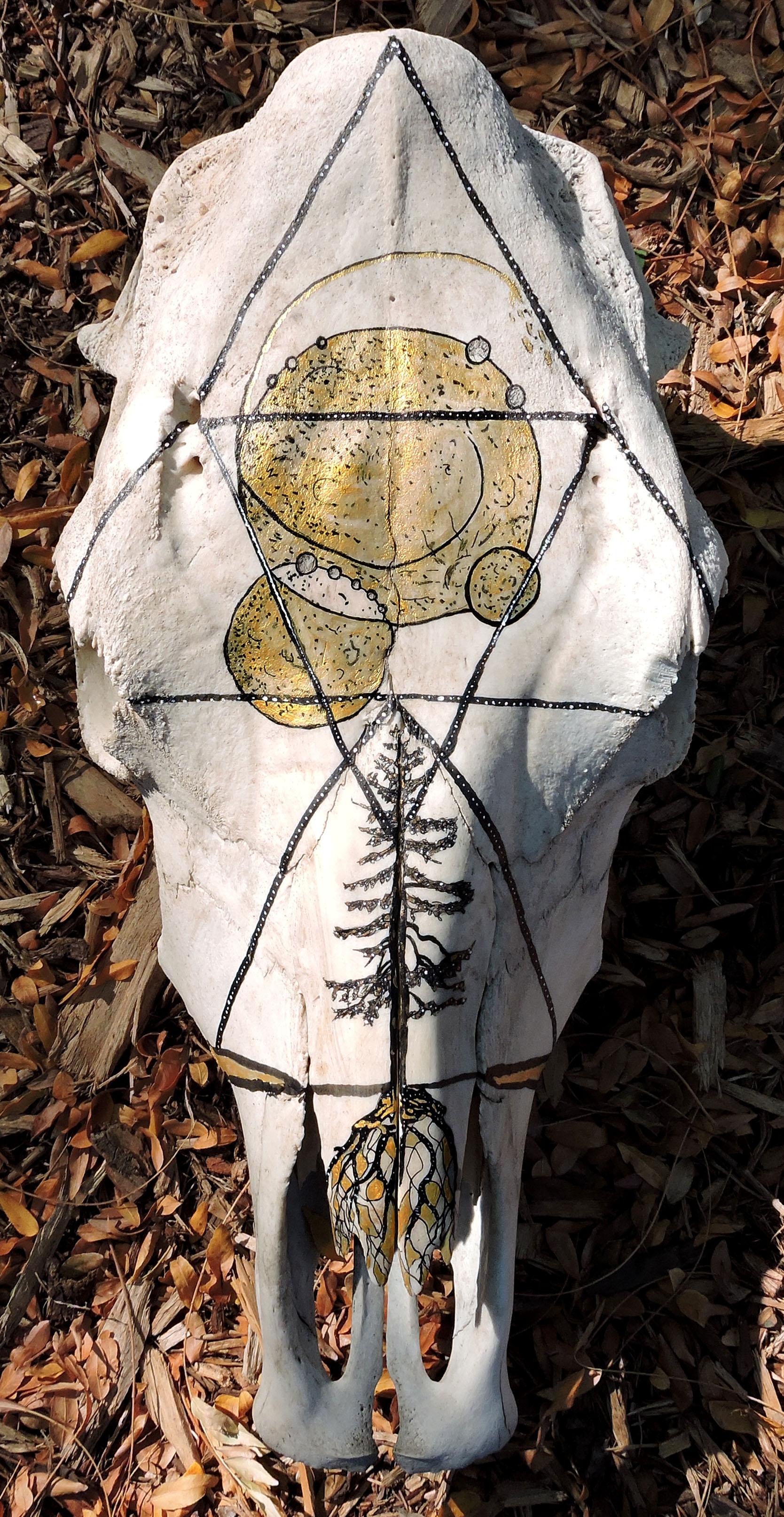 Cosmic Skull.jpg