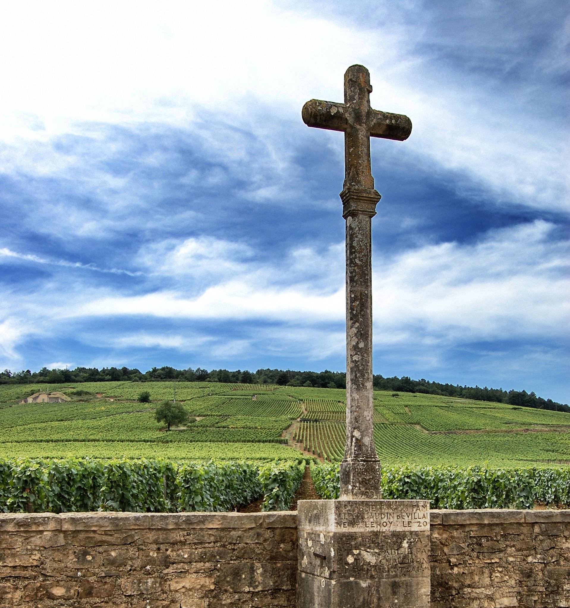 Domaine-romanee-conti-vineyard.jpg