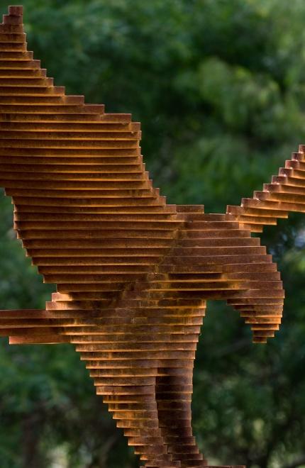 Rust_Eagle2.jpg
