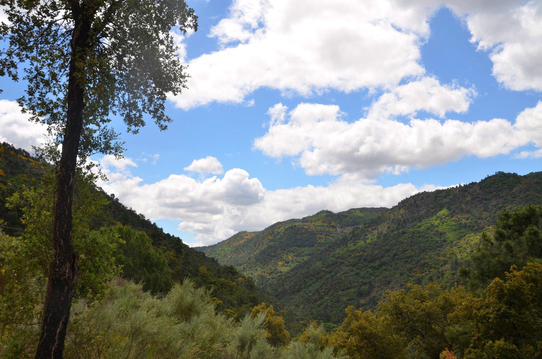 Tedo Valley.