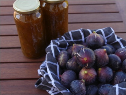 Fig jam for our  B and B breakfasts  and  Bistro Terrace  cheese boards. Our prolific fig trees give the most delicious fruit, and Odile's addition of vanilla bean and cinnamon stick makes for a stellar jam.