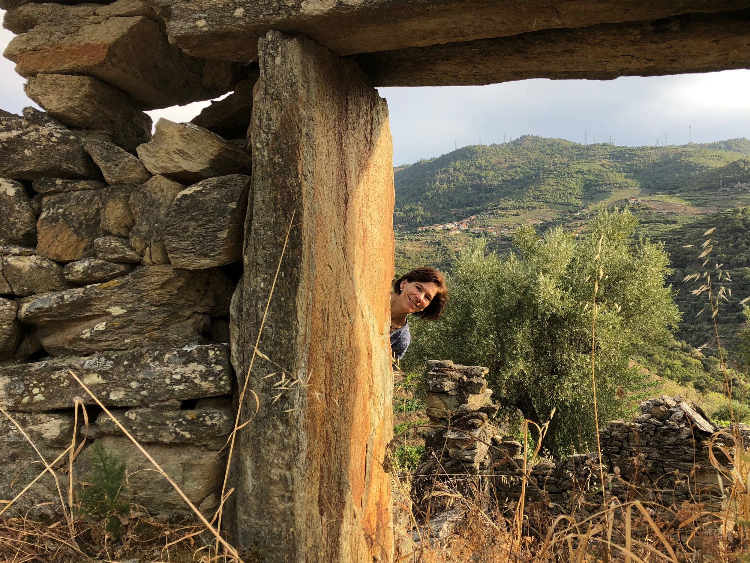 A hike up the hill from Quinta do Tedo - framed by a ruin.