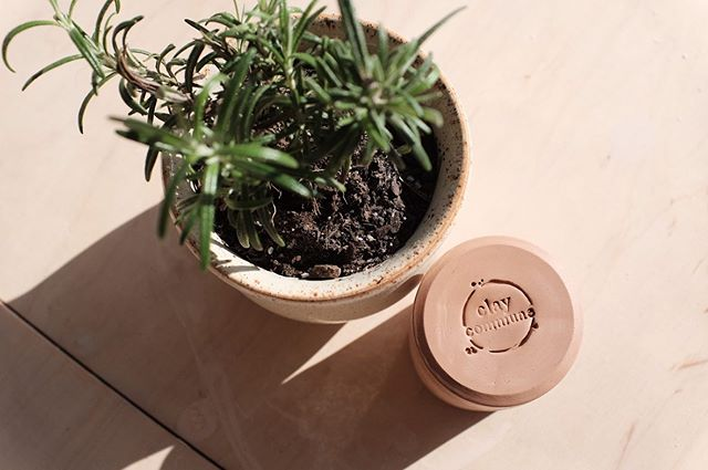 I now have quite the collection of lovely pots from @claycommune 🌱 & I had lots of fun with designing the stamp to go with them! 🥰 #claycommune