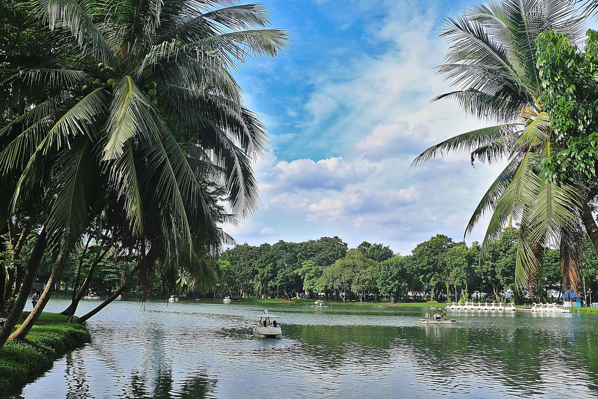 Lumpini_Park_Bangkok_swan_boats_web.jpg