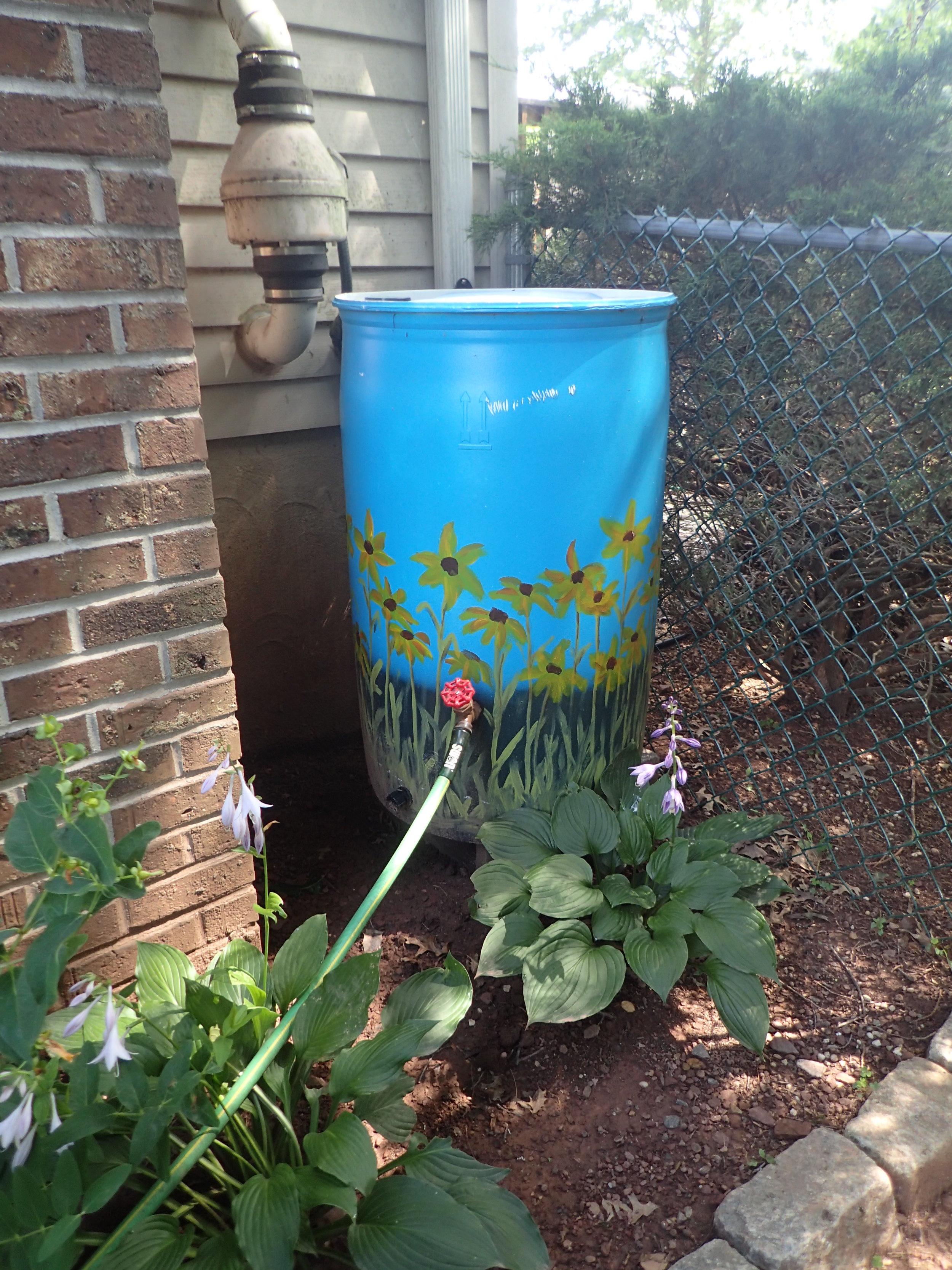 Install a rain barrel and get money back!