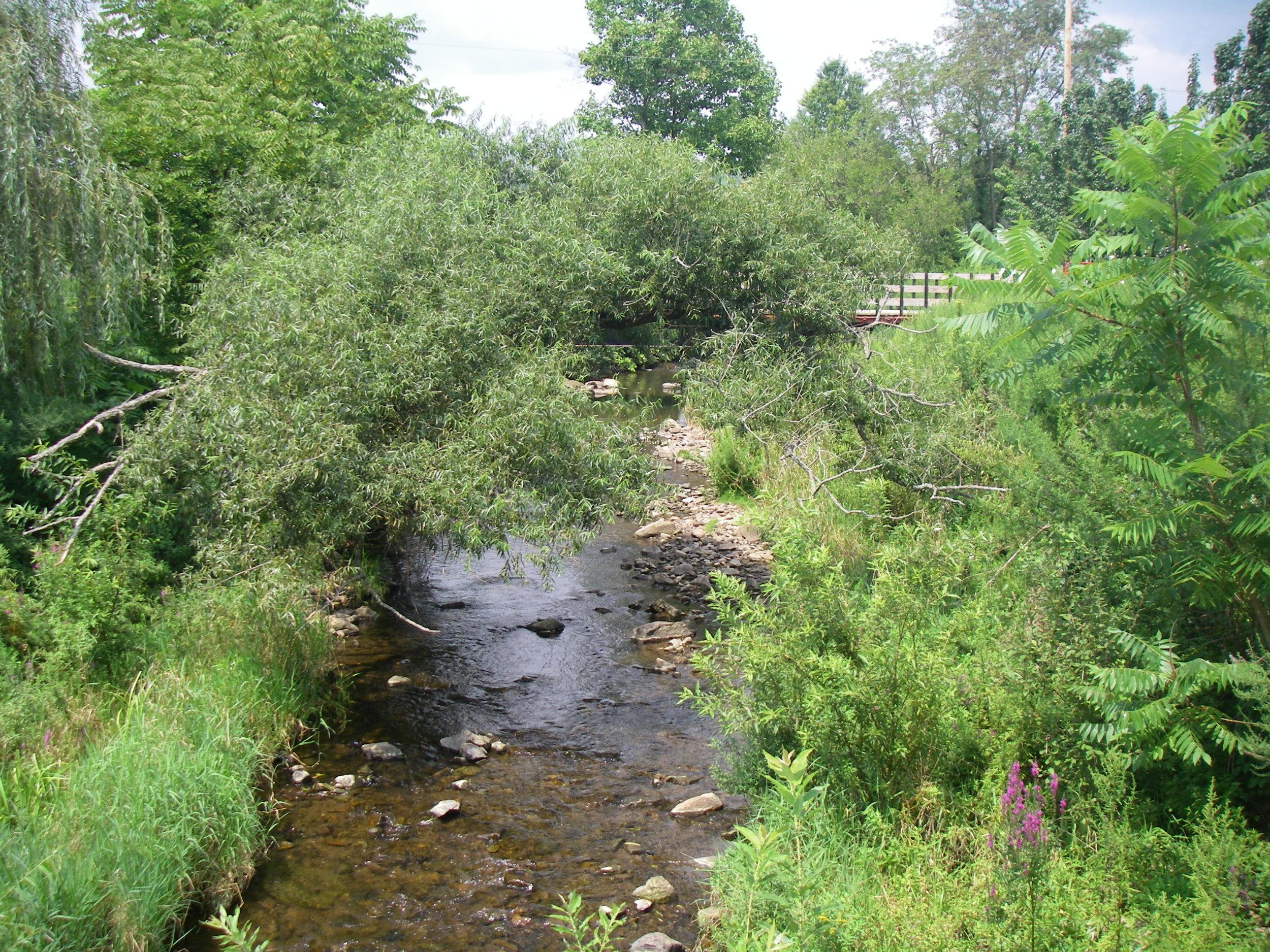 Mulhockaway Creek