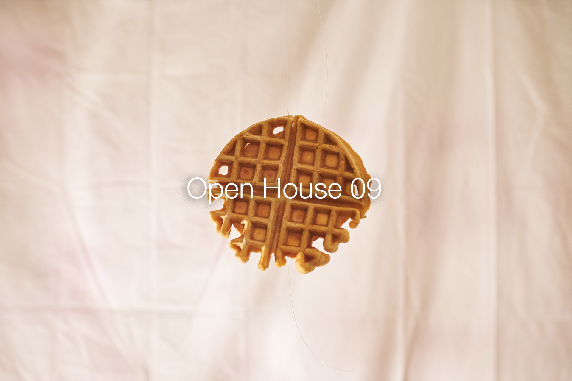 OpenHouse09.jpg