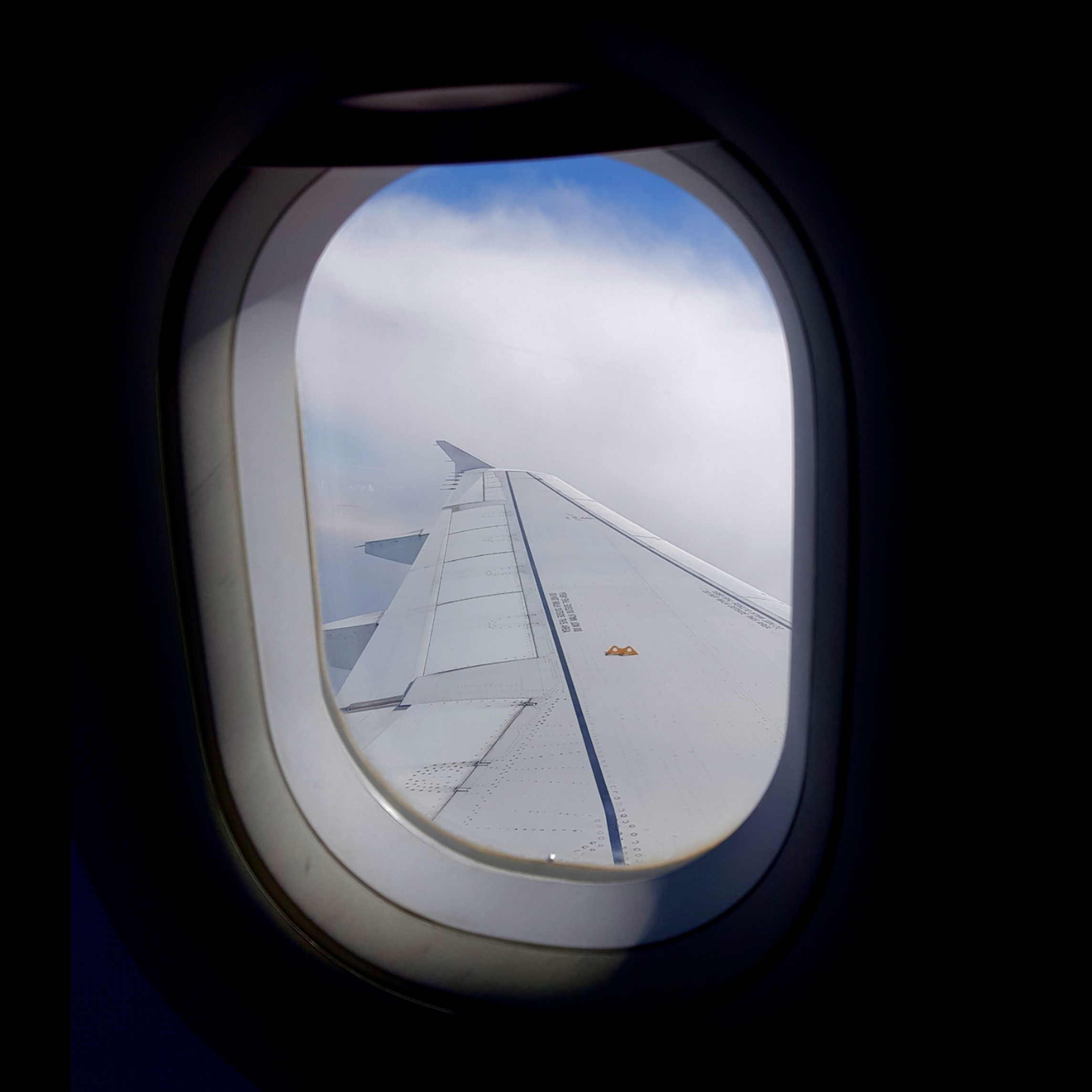 Plane wing from inside the cabin. Tips to survive flights to and from Australia