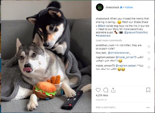 Instagram shakeshack
