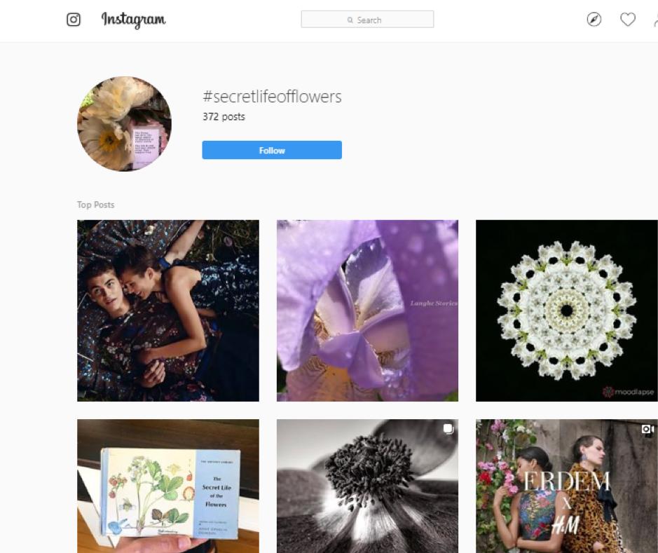 H&M flower campaign instagram