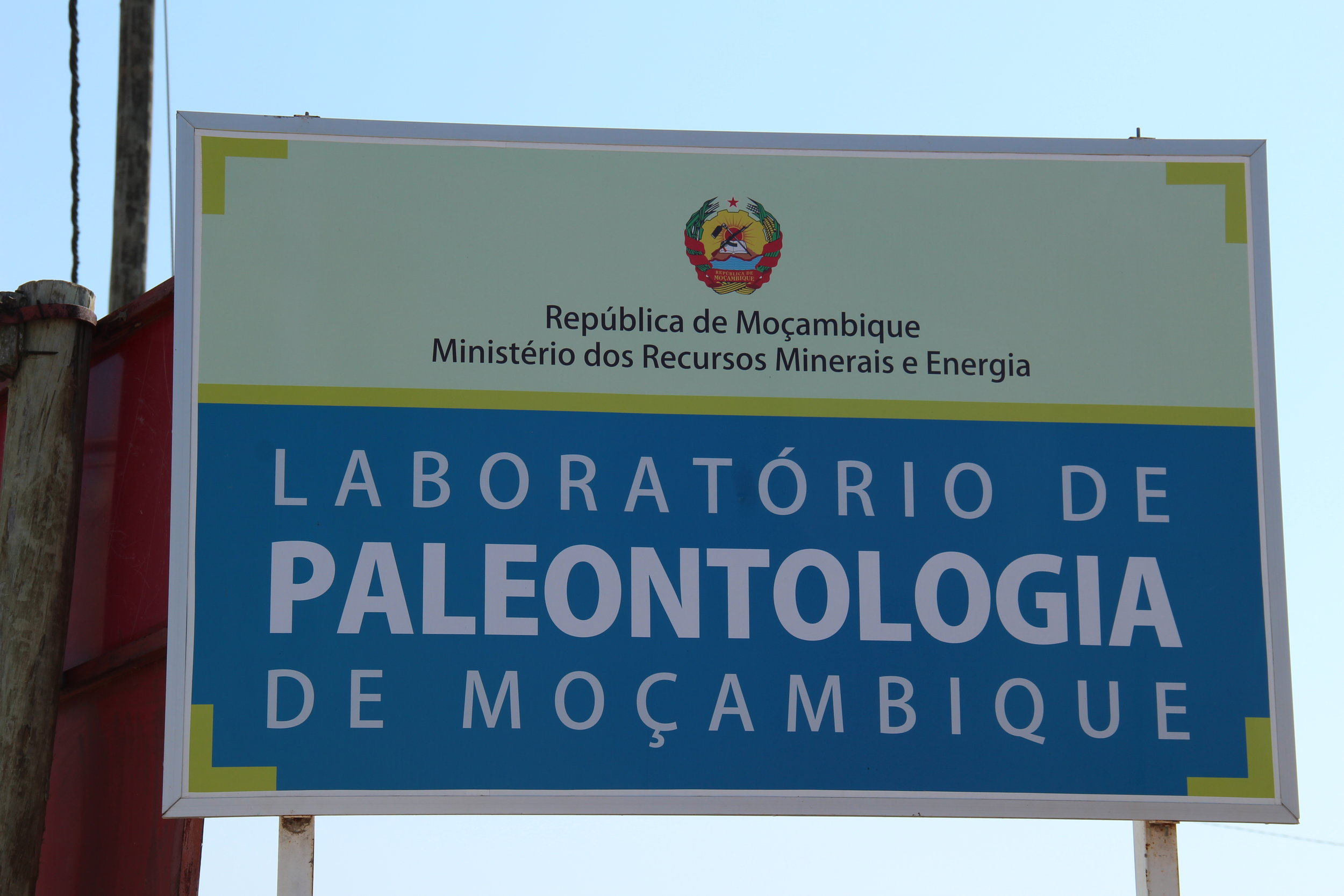 The Paleontology Laboratory was inaugurated.